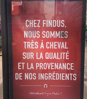 la-fausse-publicite-de-findus-117685-w460-jpg_150611