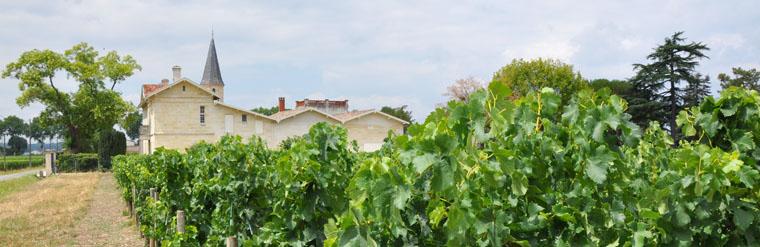 Découvrez la plus belle cave à vin du monde
