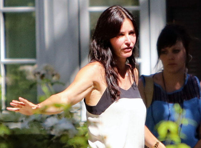 courteney-pl_reference_article (1)