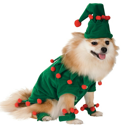 Elf-Dog-Costume