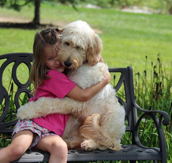 hugs rencontre
