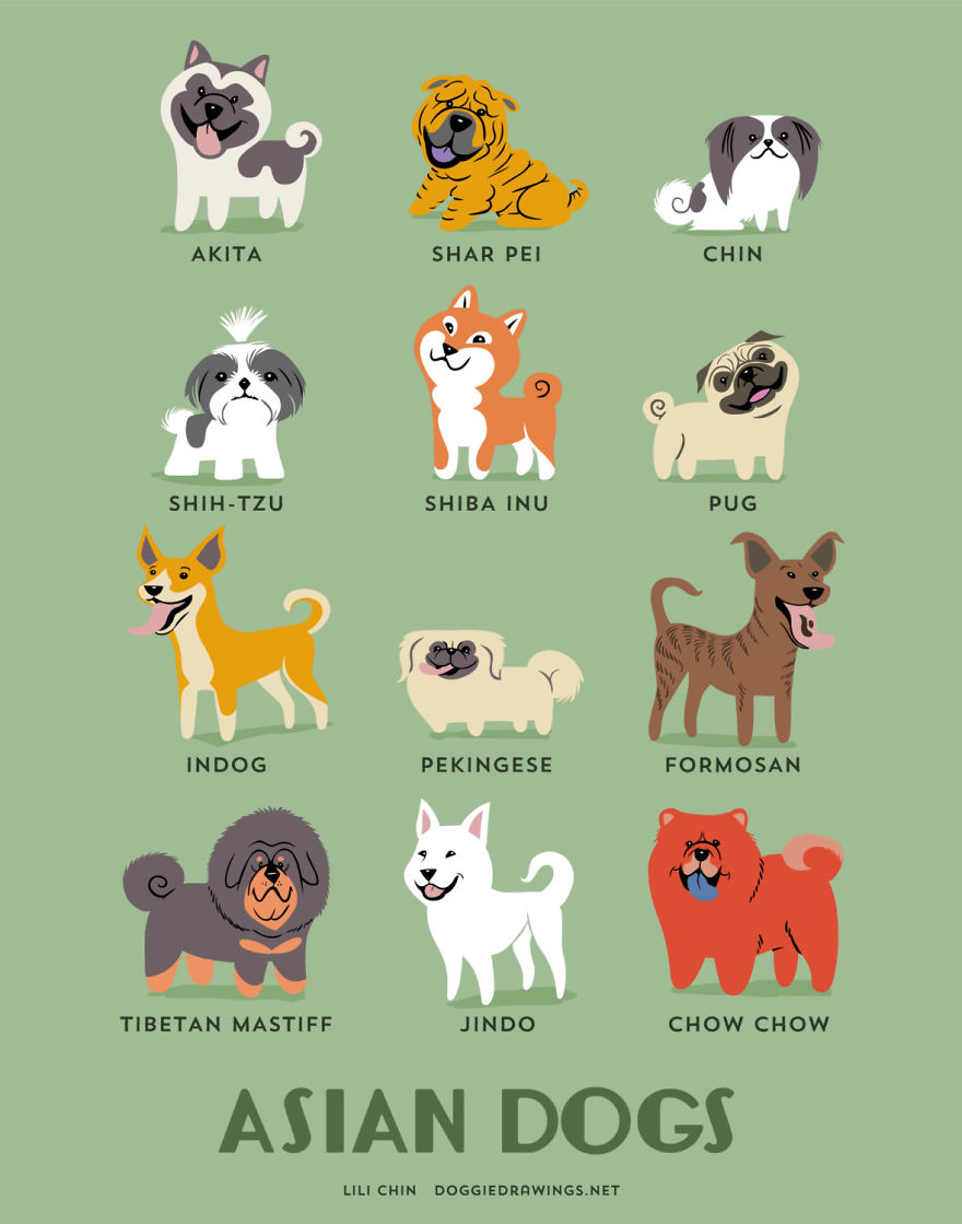 Dogs-Of-The-World-Cute-Poster-Series-Shows-The-Geographic-Origin-Of-Dog-Breeds1__880