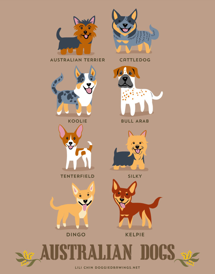 Dogs-Of-The-World-Cute-Poster-Series-Shows-The-Geographic-Origin-Of-Dog-Breeds2__880