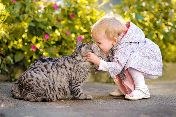 """Résultat de recherche d'images pour """"chat et enfant"""""""