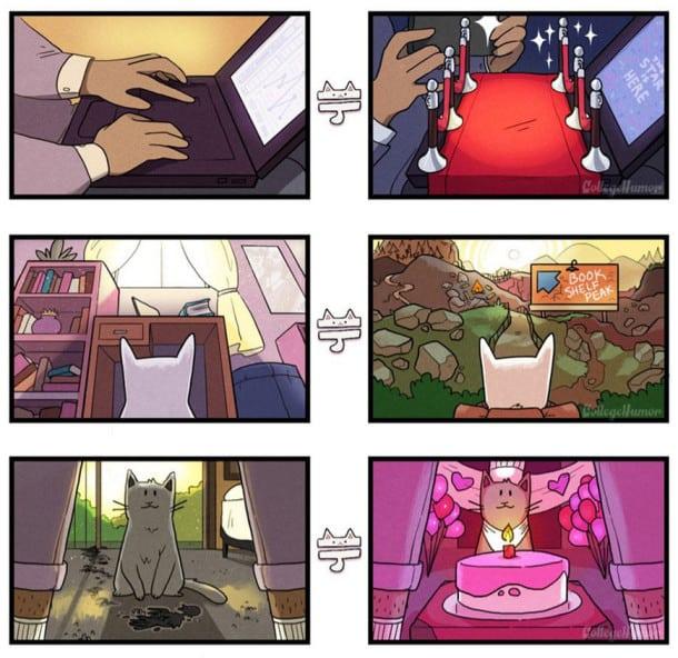 6-illustrations-qui-vous-devoilent-ce-quil-se-passe-dans-la-tete-de-votre-chat-2