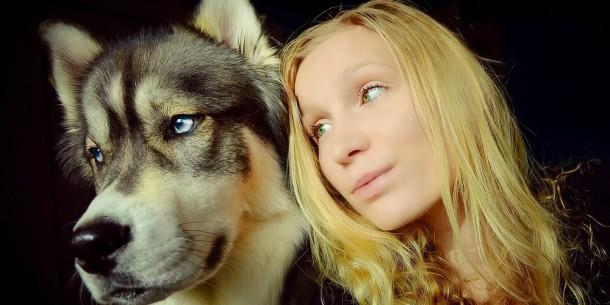 Kyro-le-husky-a-donne-a-Amanda-le-courage-de-quitter-son-compagnon-violent