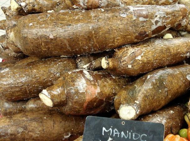 Le manioc est très consommé dans les régions tropicales, mais le manioc amer (Mahihot Ultissima) peut être très dangereux pour l&homme. Cette plante contient des traces de cyanures qui ne partent qu&en contact de l&eau. Ainsi, pour consommer le Mahihot Ultissima, il faut le tremper dans de l&eau pendant plusieurs jours ou le faire bouillir. Cependant le manioc doux (mahihot opi) peut être consommé cru sans problème.