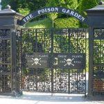 Jardin empoisonné 19