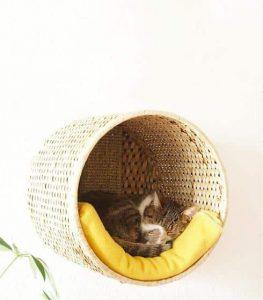 10 projets diy pour votre chat coussins tipis et autres paniers sympas. Black Bedroom Furniture Sets. Home Design Ideas