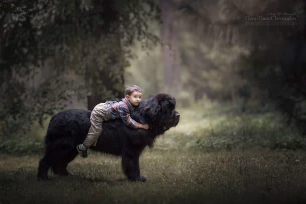chien et petit garçon