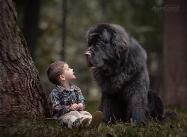 Un garçon et un gros chien dans la forêt