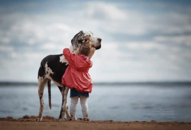 Un grand chien et une petite fille