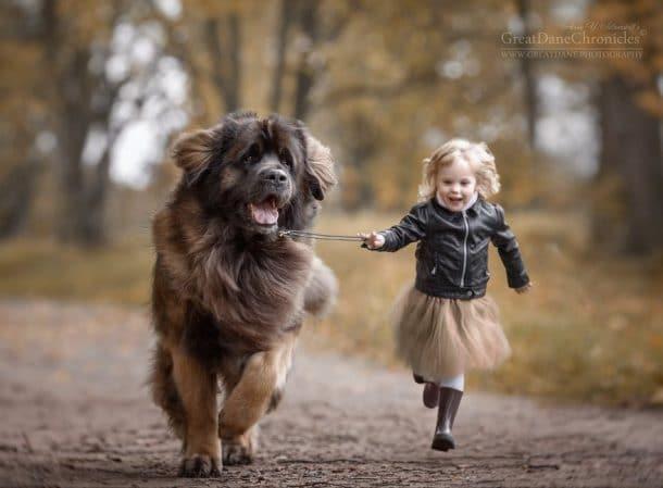 Une fillette et un chien qui courent