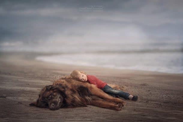Un chien et un enfant sur le sable