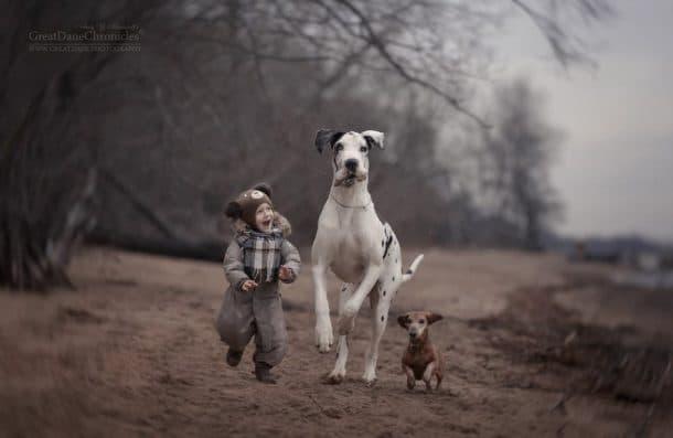 Deux chiens et un enfant