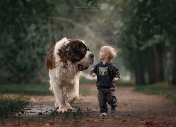 Un petit garçon et un chien