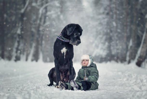 Un gros chien et un bébé