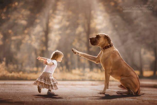 Un gros chien et une petite fille