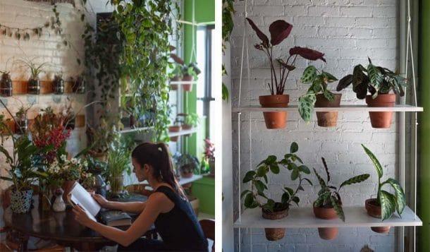 Cette jeune femme entretient plus de 500 plantes vertes for Acheter une plante verte