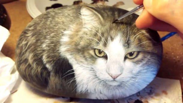 vous pensez voir un chat sur la photo rat vid o. Black Bedroom Furniture Sets. Home Design Ideas