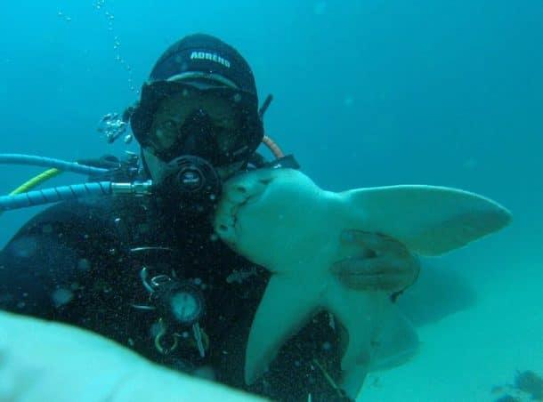 Rick Anderson et un requin