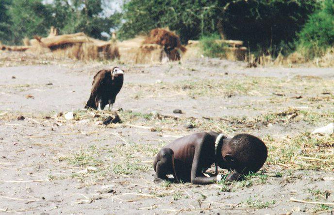 """""""le bio nous a t-il tous rendus fous """" - Page 5 Famine"""