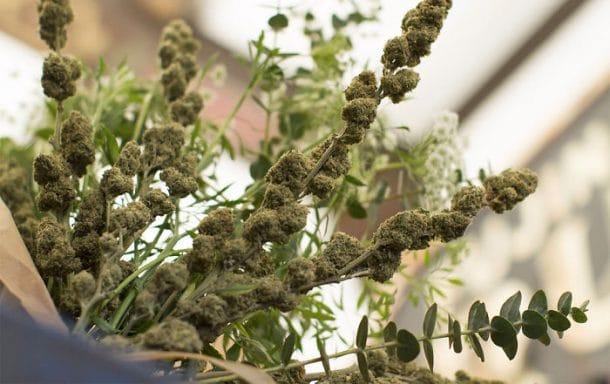 Bouquets de cannabis