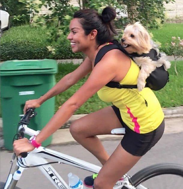 Une soci t am ricaine lance un sac dos pour chien for Idee entreprise americaine