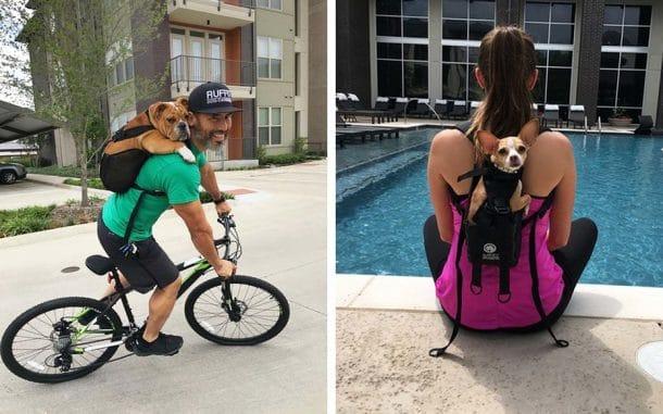 une soci t am ricaine lance un sac dos pour chien g nial pour l 39 emmener partout avec vous. Black Bedroom Furniture Sets. Home Design Ideas