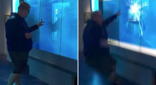 cet homme va avoir la peur de sa vie devant cet aquarium de requins vid o. Black Bedroom Furniture Sets. Home Design Ideas