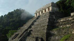 cite maya