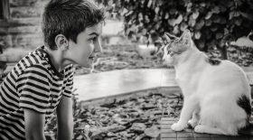 parler aux animaux