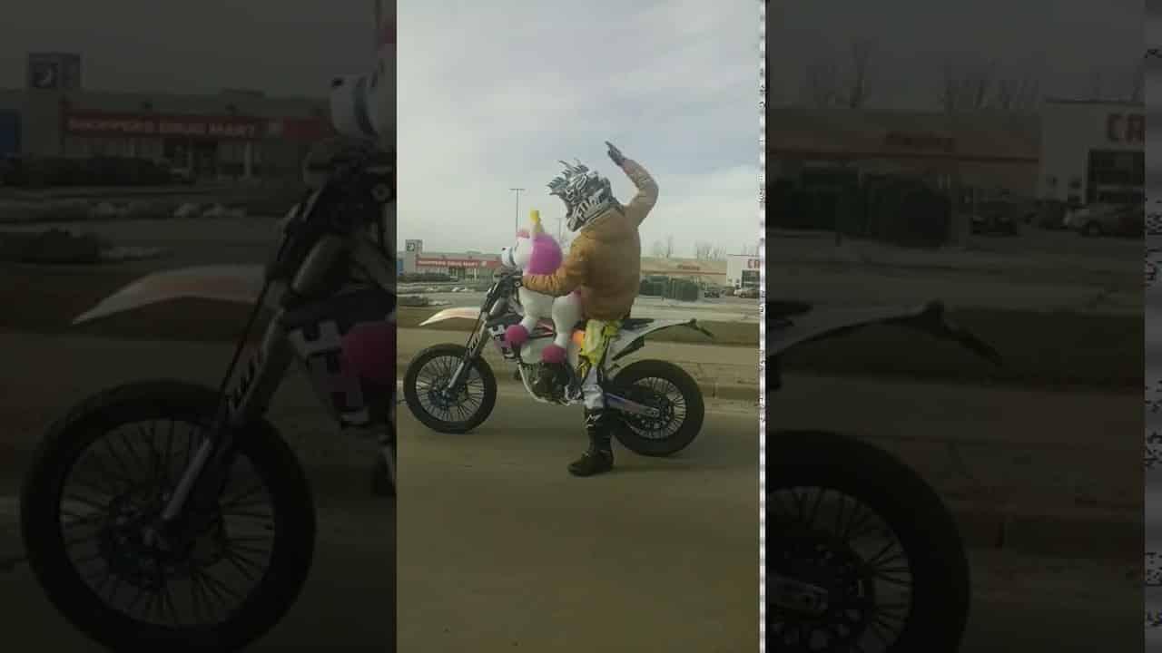 il fait de la moto avec un licorne. Black Bedroom Furniture Sets. Home Design Ideas