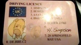 permis de conduire Homer Simpson