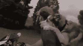 ce chien adore les balades à moto, il se tient à son maître et c'est beaucoup trop mignon