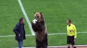 ours match de football russie