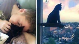bebe chat et son humain