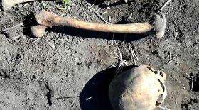crâne os restes humains enterré mari