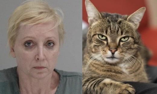 Elle tue son mari qui frappait son chat