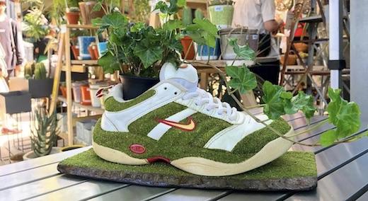 Il recycle ses baskets nike en pots de fleurs