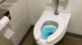 toilettes publiques parc bouchées exprès