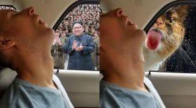 photomontages vengeance petit ami qui dort