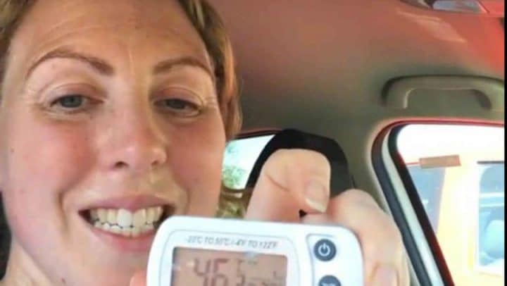 expérience vétérinaire thermomètre température voiture chien