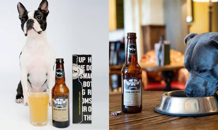 biere chiens