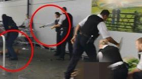 pitbull taser police