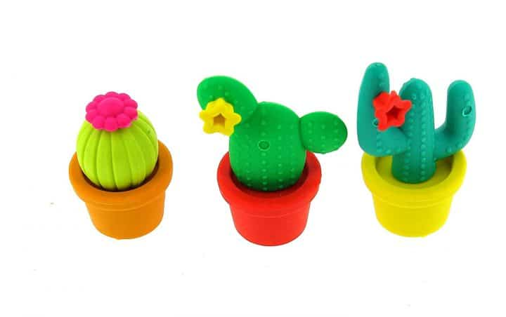 gomme cactus