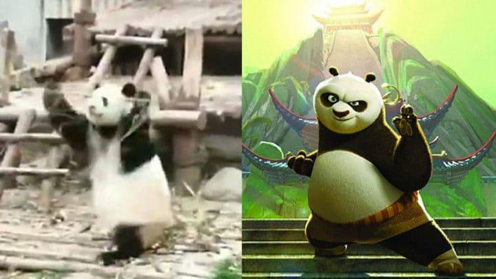 Un Panda Réalise Des Mouvements Darts Martiaux Avec Du Bambou Comme Dans Le Film Kung Fu Panda