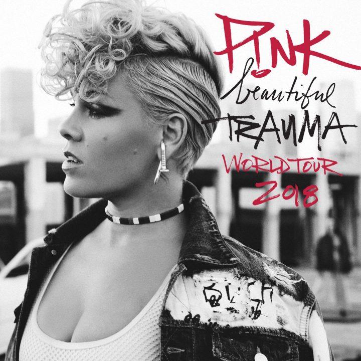 Hospitalisée en Australie, elle annule deux concerts — Pink