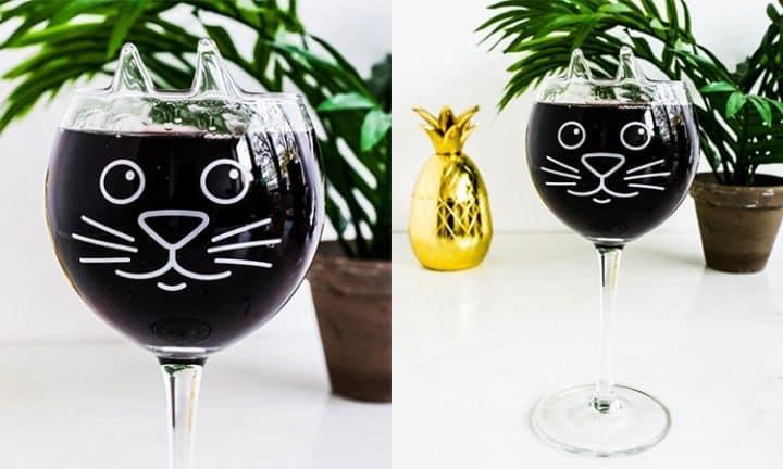vin chat