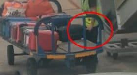 bagagiste vole enceinte baffle valise